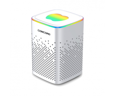 Concord | C-8208 |  BLUETOOTH I TF KART I FM SPEAKER